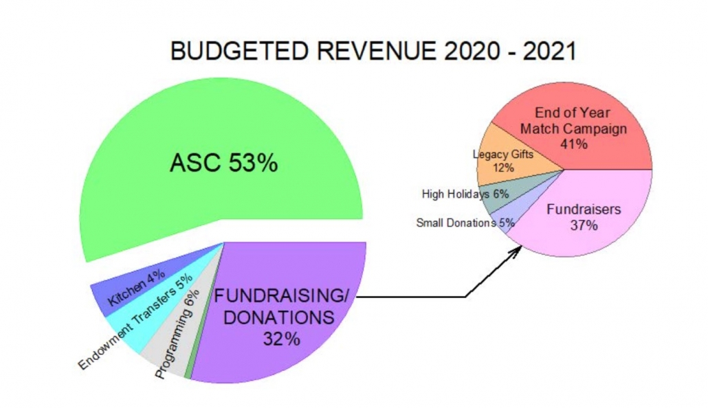 Piecharts of our Budgeted Revenue in 2020 - 2021